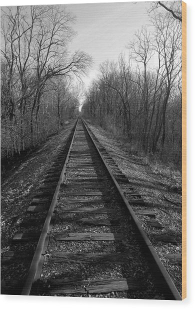 Tracks Wood Print by Brian Amick