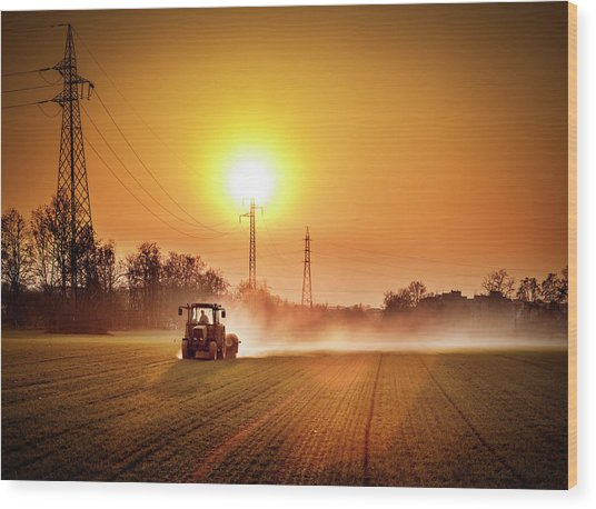 Tractor In A Field At Sunset Wood Print by Rinocdz