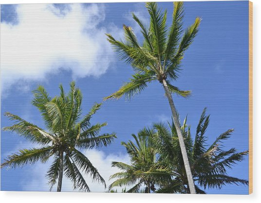 Tradewinds Wood Print