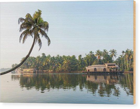 Traditional Houseboat, Kerala Wood Print by Peter Adams