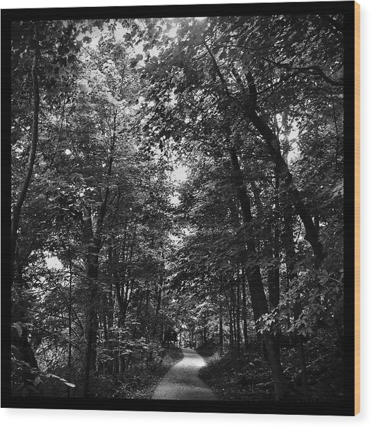 Trail To Love Wood Print