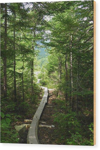 Trail To Sandy Stream Pond Wood Print