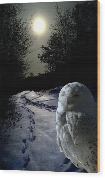 Trail Watch Wood Print