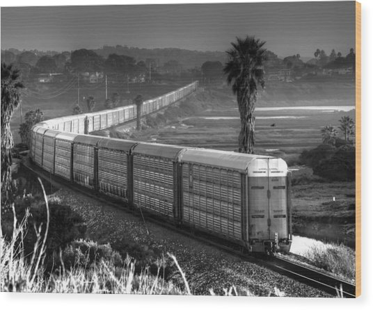 Train At San Elijo Lagoon Wood Print