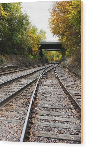 Train Tracks And Bridge In Autumn Wood Print
