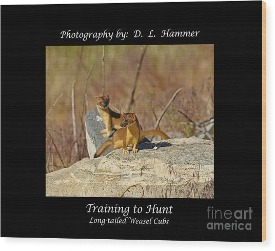 Training To Hunt Wood Print by Dennis Hammer