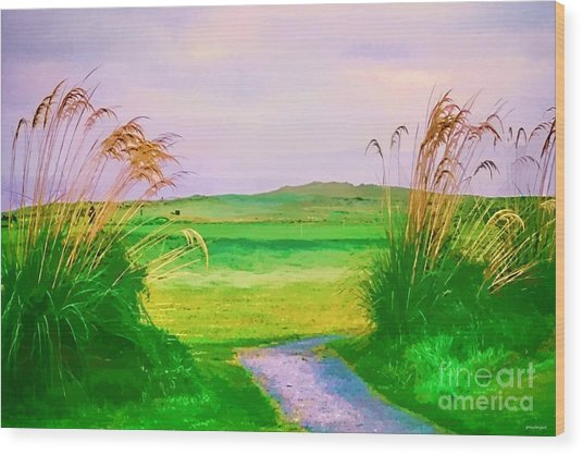 Tralee Ireland Water Color Effect Wood Print