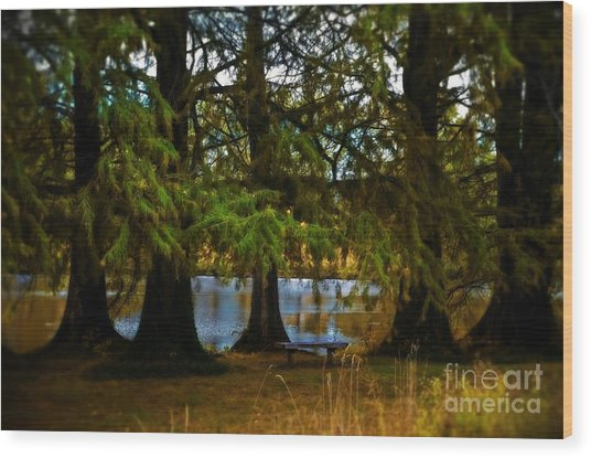 Tranquil And Serene Wood Print