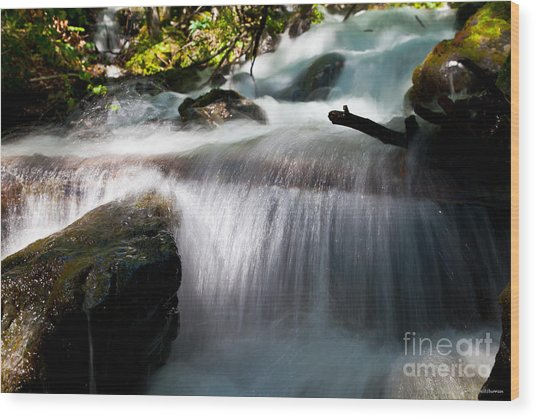 Tranquility  Wood Print by Chris Heitstuman