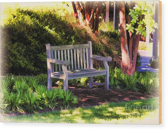 Tranquility In The Park Wood Print