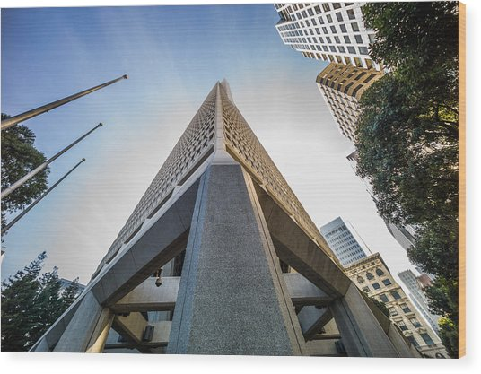 Transamerica Tower Wood Print