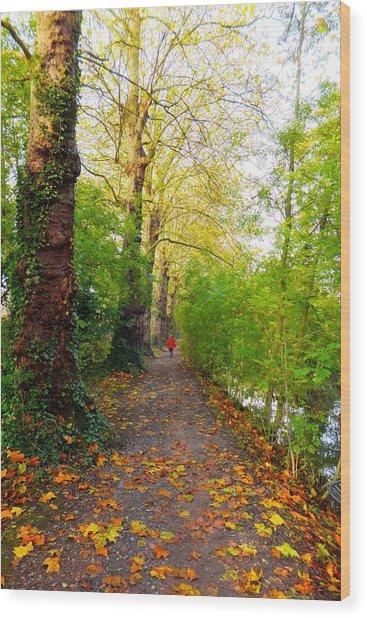 Traversee De L'automne Au Bord Du Canal De Seclin Wood Print