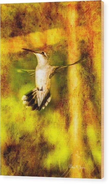 Hummingbird - In Flight - Treading Air Wood Print by Barry Jones