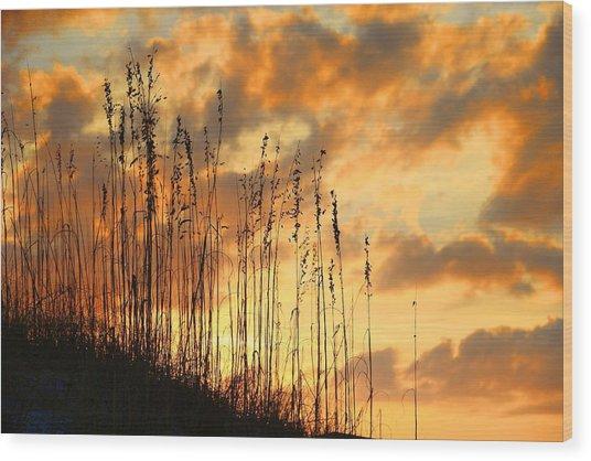 Treasure Island Sunset Wood Print
