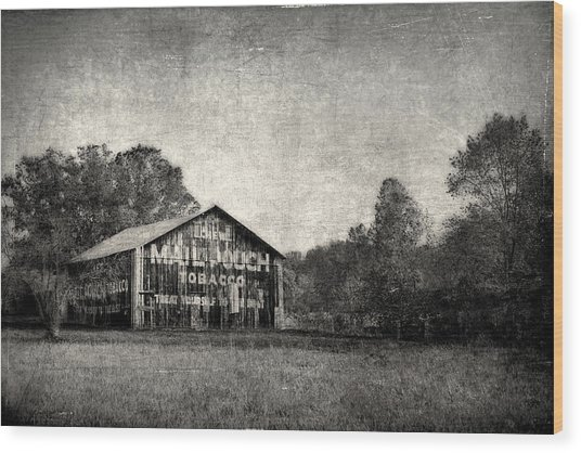 Treat Yourself To The Best Wood Print by Robert Tolchin