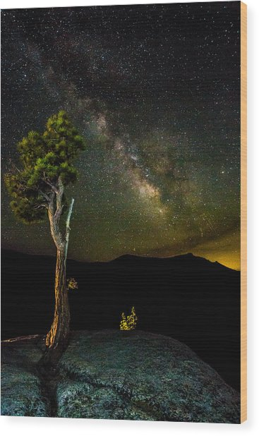 Tree Amongst The Stars Wood Print