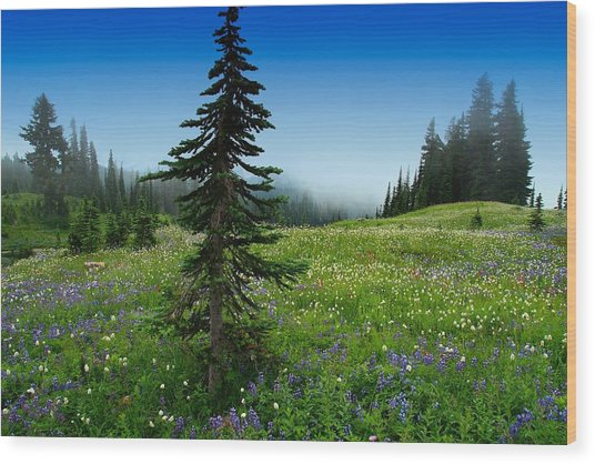 Tree Amongst Wildflowers Wood Print