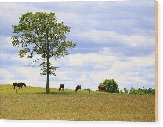 Tree And Horses Wood Print
