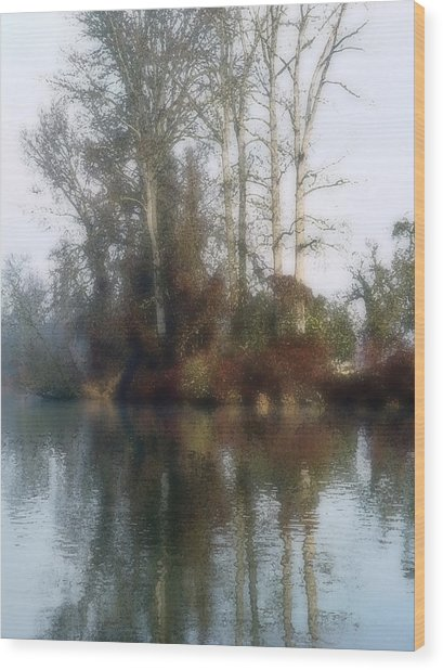 Tree And Reflection Wood Print