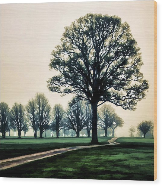 Tree At Dawn On Golf Course Wood Print