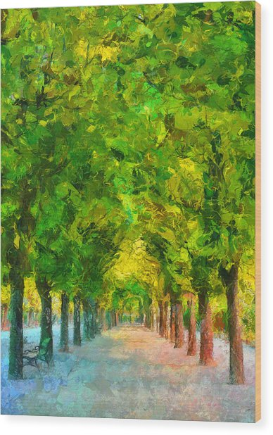 Wood Print featuring the painting Tree Avenue In The Vienna Augarten by Menega Sabidussi