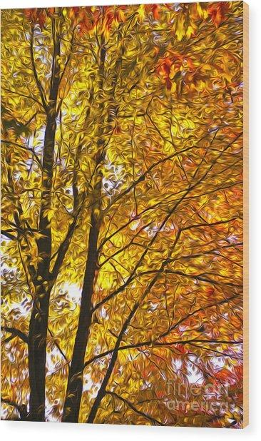Tree Brightness Wood Print by Nur Roy