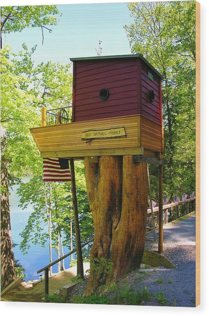 Tree House Boat Wood Print