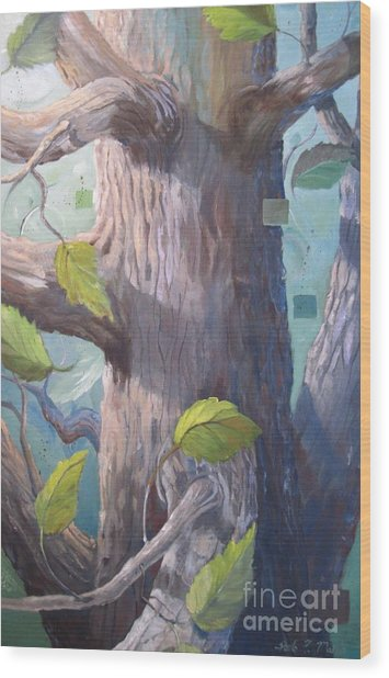 Tree Hugger Wood Print by Paula Marsh