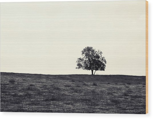 Tree In Field Wood Print