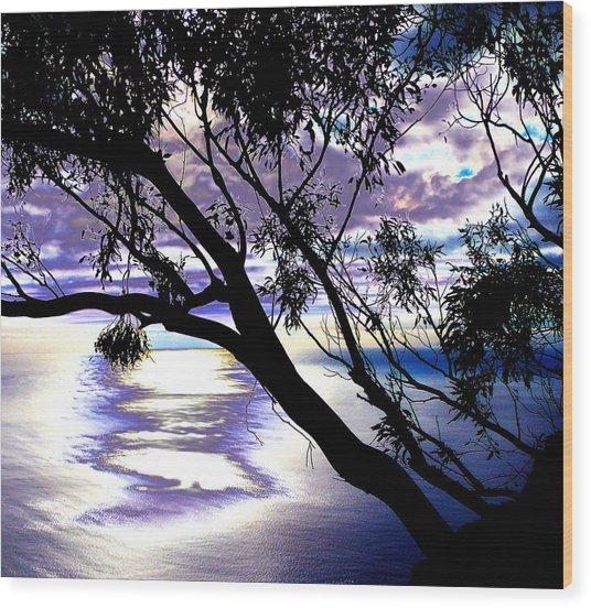 Tree In Silhouette Wood Print