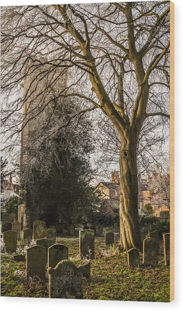 Tree In St Mary Magdalene's Church Yard Wood Print