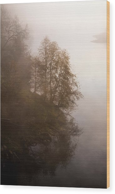 Tree In The Fog  Wood Print