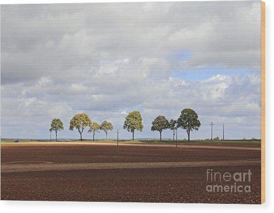 Tree Line France Wood Print