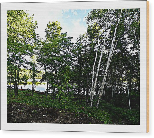 Tree Lined Lake Wood Print by Dianne  Lacourciere