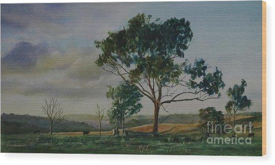 Tree Near Grove Creek Observatory Wood Print