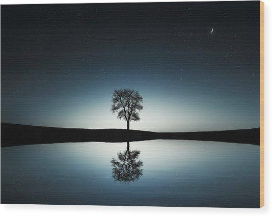 Tree Near Lake At Night Wood Print