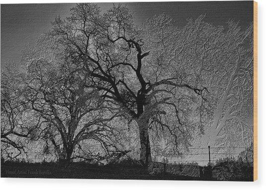 Tree Night II Wood Print
