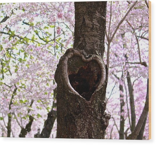 Tree Of Love Wood Print