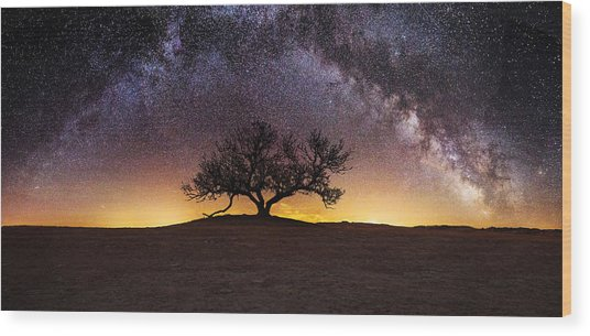 Tree Of Wisdom Wood Print