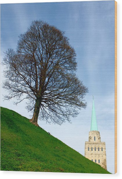 Wood Print featuring the photograph Tree On A Hill by Jeremy Hayden