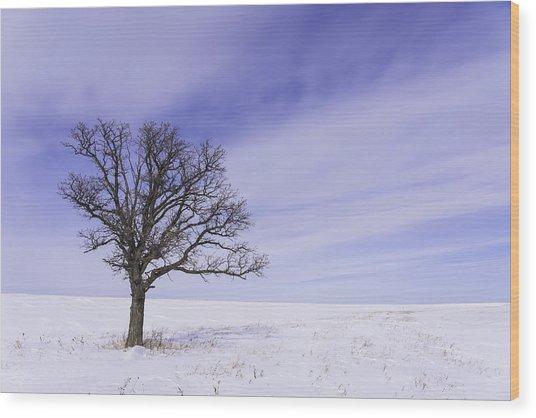 Tree On Hwy 59 Wood Print