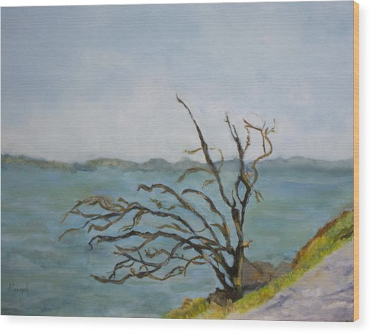 Tree On The Hudson River Wood Print