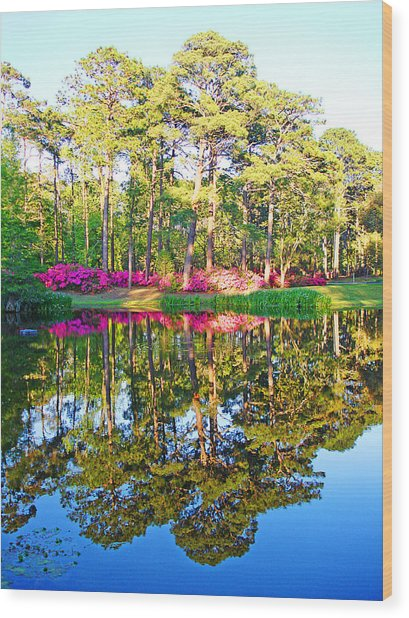 Tree Reflections And Pink Flowers By The Blue Water By Jan Marvin Studios Wood Print