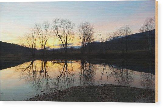 Tree Reflections Landscape Wood Print