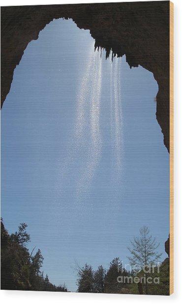 Tree Root Run-off Wood Print