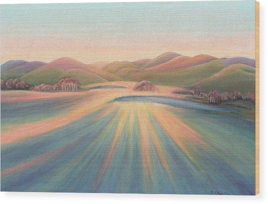 Tree Shadows Sunset Tasmania Wood Print