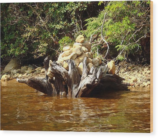 Tree Stump Filled With Rocks Wood Print