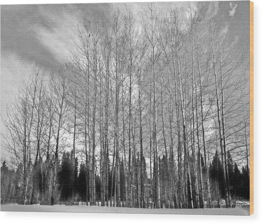 Tree Sweep Wood Print