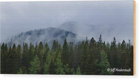 Tree Top Clouds Wood Print
