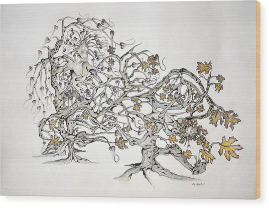 Tree Witch Wood Print by Glenn Calloway